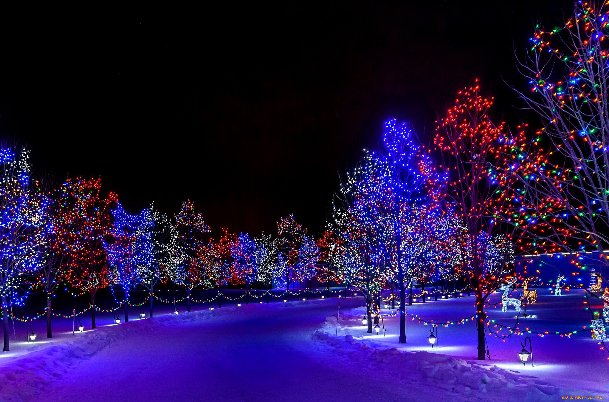 картинки нового года ночью желаемого результата